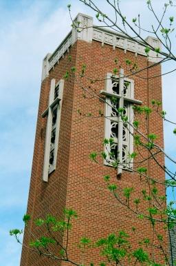 Church bell tower behind green budding tree.